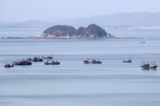Hàn Quốc tố tàu Trung Quốc đánh bắt cạn kiệt nguồn cá - 1