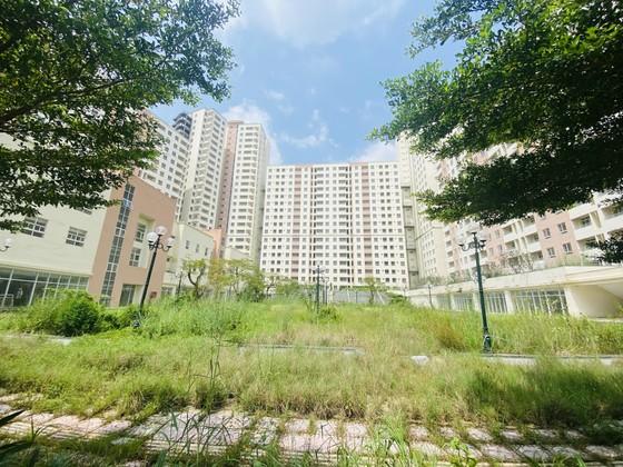 Chia đôi 3.790 căn hộ tái định cư ở Thủ Thiêm để đấu giá ảnh 1