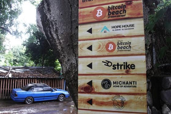 'Nền kinh tế Bitcoin' tại thị trấn ven biển El Salvador ảnh 2