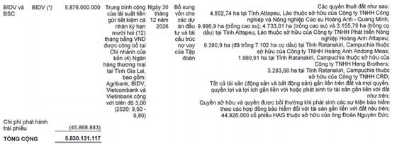 Giấy tờ đất 7 công ty bị thế chấp vay 5.830 tỷ đồng tại BIDV, tỷ phú Trần Bá Dương có chia tay Bầu Đức? - Ảnh 3.