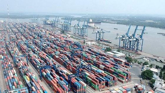 Tân Cảng Cát Lái tạm ngưng tiếp nhận hàng hóa ảnh 1
