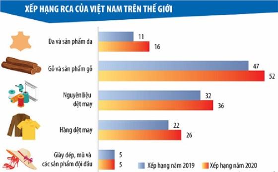 Vẽ lại bức tranh lợi thế so sánh của Việt Nam ảnh 1