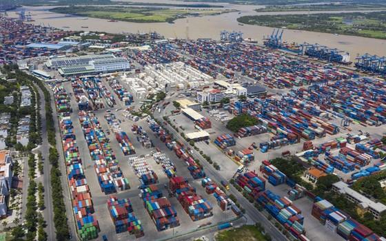 Khẩn cấp 'giải cứu' cảng Cát Lái ảnh 1