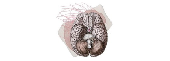 Tất cả các triệu chứng Covid-19 bạn không biết ảnh 2