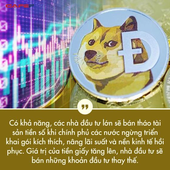 Tỷ suất sinh lời đạt hơn 8.000% từ đầu năm đến nay, bong bóng Dogecoin khi nào vỡ? - Ảnh 4.