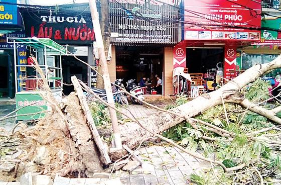 Bắc Trung bộ thiệt hại nặng nề do bão số 2 ảnh 1