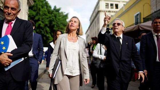 EU lên án cấm vận kinh tế Cuba ảnh 1