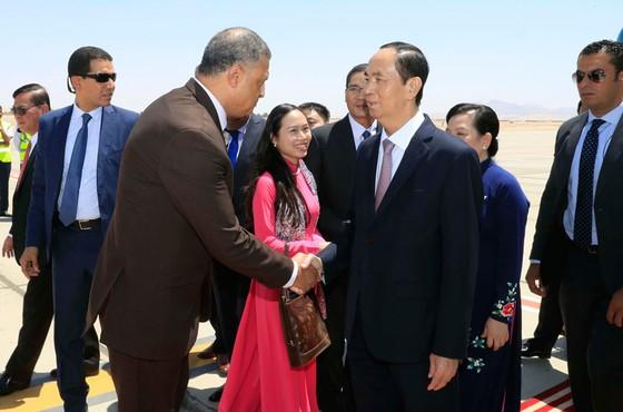 Chủ tịch nước Trần Đại Quang thăm cấp Nhà nước Ai Cập: Đưa quan hệ Việt Nam - Ai Cập lên tầm cao mới ảnh 1