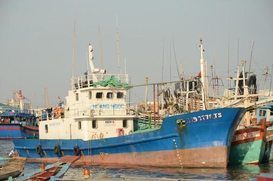 Ngư dân ôm nợ vì tàu nằm bờ ảnh 1