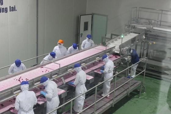 Tăng đầu tư vào công nghiệp chế biến thực phẩm ảnh 1