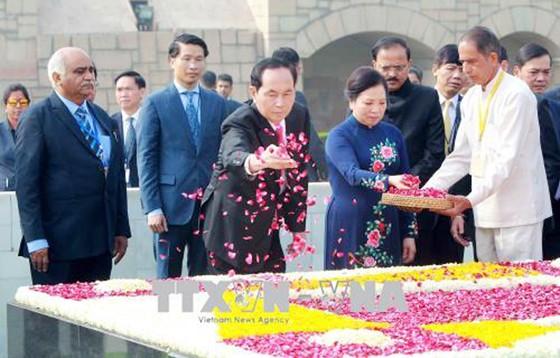 Chủ tịch nước Trần Đại Quang hội đàm với Thủ tướng Ấn Độ Narendra Modi ảnh 1
