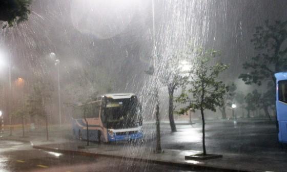 Đêm 30-10, Bình Định 'gồng mình' ứng phó với bão số 5  ảnh 1