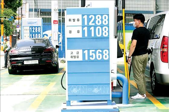 Giá dầu mỏ và chứng khoán cùng sụt giảm  ảnh 1