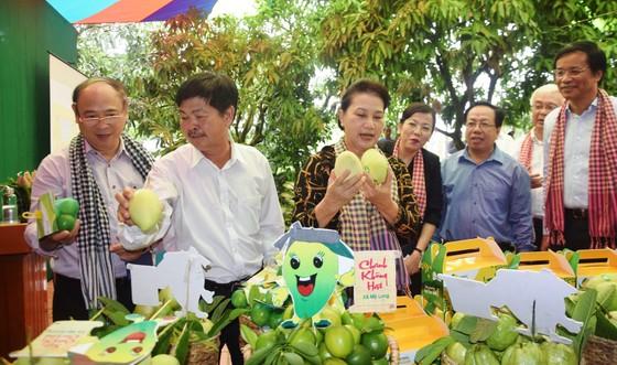 Chủ tịch Quốc hội Nguyễn Thị Kim Ngân trong chuyến về thăm HTX Xoài Mỹ Xương (huyện Cao Lãnh, tỉnh Đồng Tháp), một trong những HTX kiểu mới, hoạt động hiệu quả