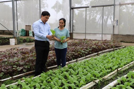 Phát triển huyện Nhà Bè thành khu đô thị kết hợp với nông nghiệp công nghệ cao ảnh 1