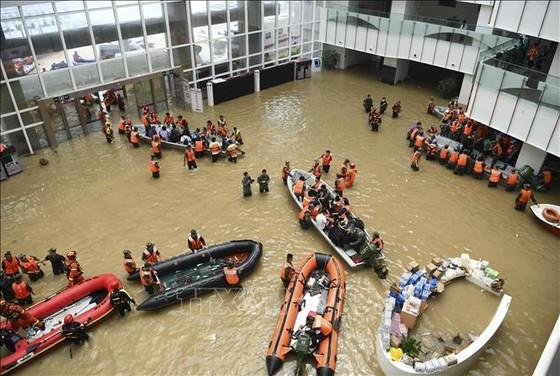 Mưa bão, lở đất gây thiệt hại nhiều nơi ảnh 1