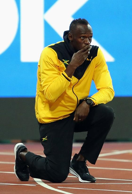 Bolt sẽ không bao giờ trở lại ảnh 1