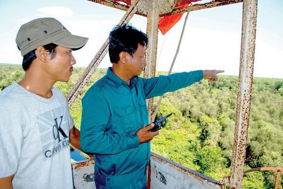 Dốc sức bảo vệ rừng mùa khô ảnh 1