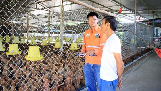 Quỹ vốn vay phục hồi kinh tế - điểm sáng về nguồn vốn cho vay tại Thái Nguyên ảnh 1