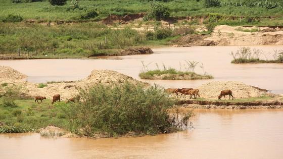 Mặt trái khai thác khoáng sản ở Tây Nguyên - Bài 2: Núi đồi nham nhở, sông sạt lở ảnh 3