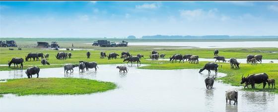 Đổi gió cuối tuần ở Tây Ninh, đừng quên check-in những địa điểm nổi tiếng này ảnh 6