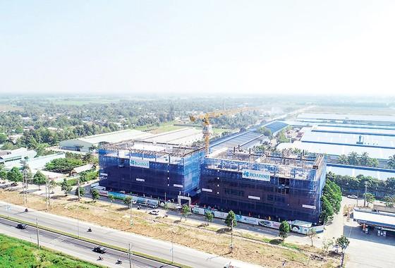 Hòa Bình được khen thưởng 320 triệu đồng trong dự án đầu tiên tại Vĩnh Long ảnh 1