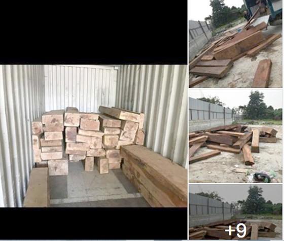 Ngang nhiên mua bán trái phép gỗ quý hiếm ảnh 1