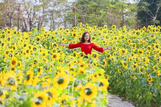 Phát cuồng với những góc check-in tại Lễ hội hoa xuân Sun World HaLong Complex ảnh 9