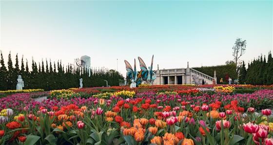 Đà Nẵng có 'Công viên chủ đề hàng đầu Việt Nam' ảnh 5