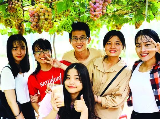 Khởi nghiệp trồng nho ở xứ Dừa ảnh 6