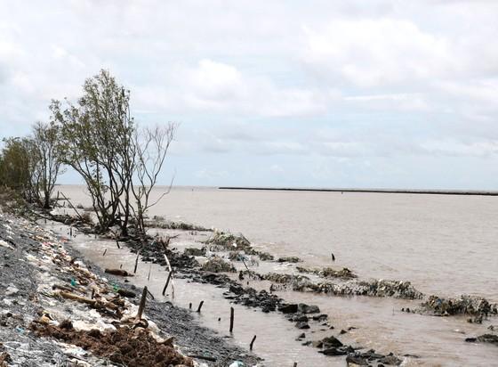 Đồng bằng sông Cửu Long: Khẩn cấp cứu đê biển bị sạt lở  ảnh 1