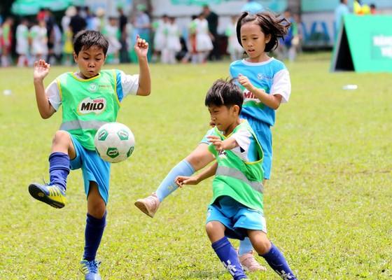 Chủ tịch Liên đoàn Bóng đá TPHCM (HFF) Trần Anh Tú: Sẽ chăm lo đặc biệt cho bóng đá học đường ảnh 1