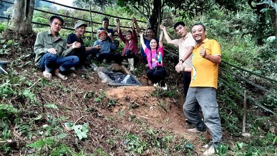 Bảo tồn cây chè cổ thụ tại vùng trà Cao Bồ, tỉnh Hà Giang ảnh 4