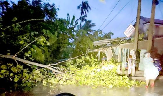 Bão số 6 áp sát miền Trung: Gió giật tốc nhiều mái nhà, cây cối gãy đổ ảnh 1