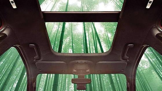 Ford và xu hướng sử dụng vật liệu xanh trong sản xuất ô tô  ảnh 1