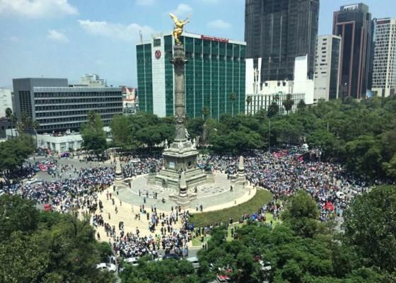Mexico: Động đất 7,1 độ Richter, ít nhất 149 người thiệt mạng ảnh 8