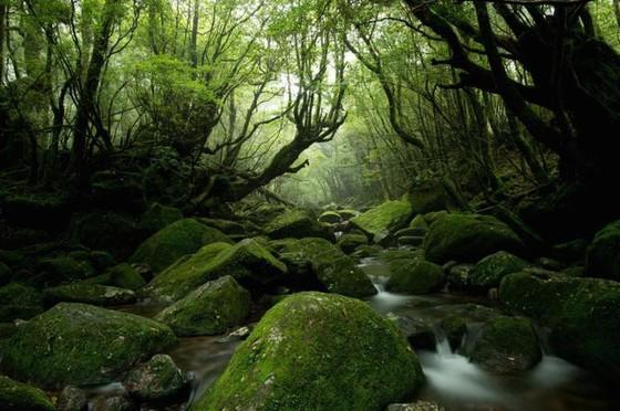 12 vùng sông nước tuyệt đẹp trên thế giới - Ảnh 12.