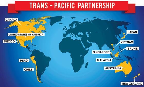 Các nước nỗ lực vì TPP ảnh 1