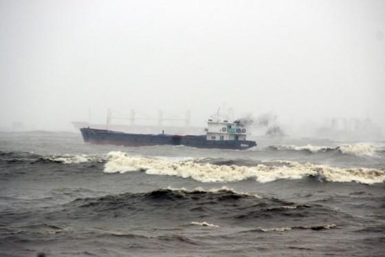 """Các tàu hàng bị bão đánh bật đều là tàu """"vãng lai"""" ảnh 1"""
