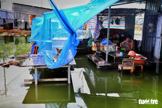 Sống du mục ngay giữa Sài Gòn - Ảnh 11.