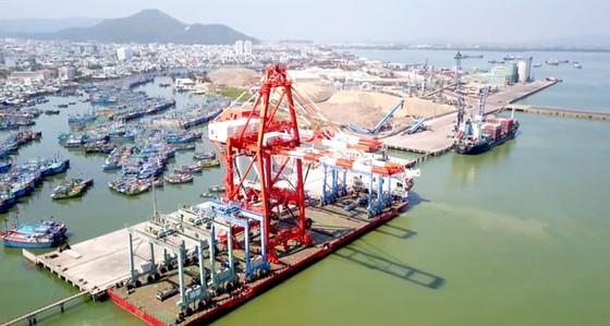 Cảng Quy Nhơn chuyển mình sau CPH ảnh 1