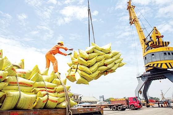 Việt Nam - Điều kỳ diệu kinh tế thế giới ảnh 1