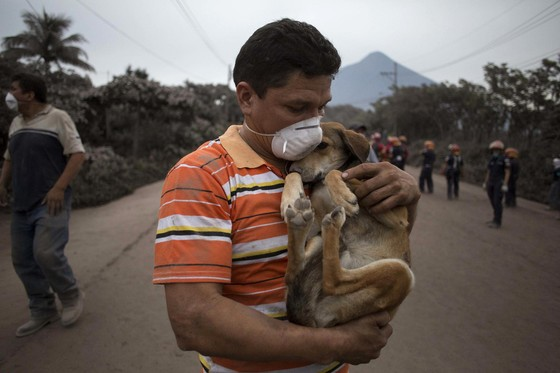 Hình ảnh tang thương khi núi lửa phun giết hàng chục người ở Guatemala - Ảnh 15.