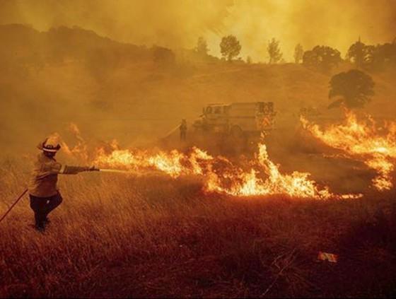 Hoa Kỳ đảo lộn vì nắng nóng kỷ lục  ảnh 3