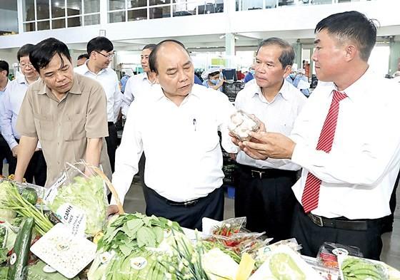 Gỡ vướng mắc, thúc đẩy đầu tư vào nông nghiệp ảnh 1