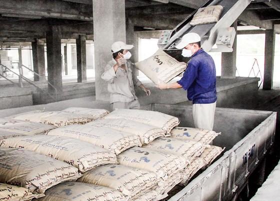 Doanh nghiệp xi măng - Rộng đường xuất khẩu, lợi nhuận khó tăng ảnh 1