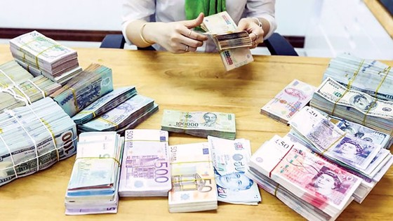 Ngành ngân hàng 2019 - Sức ép ngoại lai  ảnh 1
