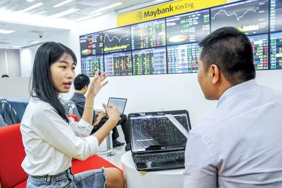 Thị trường chứng khoán 2018 - Cơ hội trước, cạm bẫy sau ảnh 1