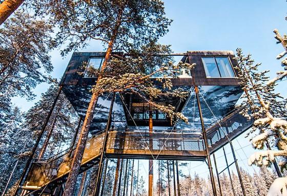 Trải nghiệm khách sạn trên cây ở Thụy Điển ảnh 1