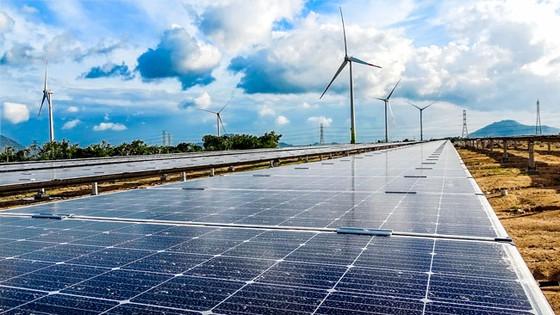Trung Nam Group: Đầu tư 10.000 tỷ đồng dự án năng lượng tái tạo ảnh 1
